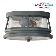 Feiss OL8113STC - 2- Light Outdoor Flush Mount